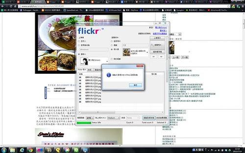 flickr10.bmp