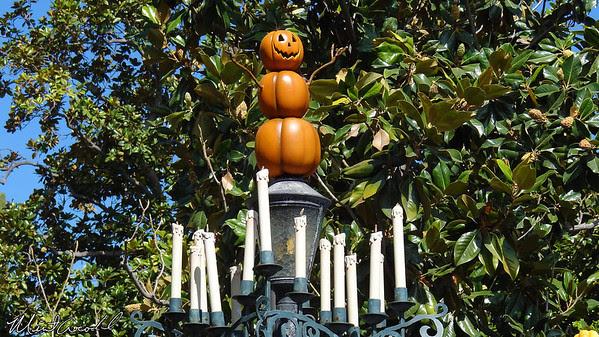 Disneyland, Haunted Mansion Holiday, Halloween Time