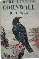 Bird Life in Cornwall by B.H. Ryves (1948)