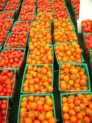 la cienega  farmers' market tomatoes