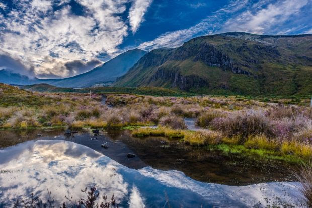 The Top 5 Places to Visit in New Zealand