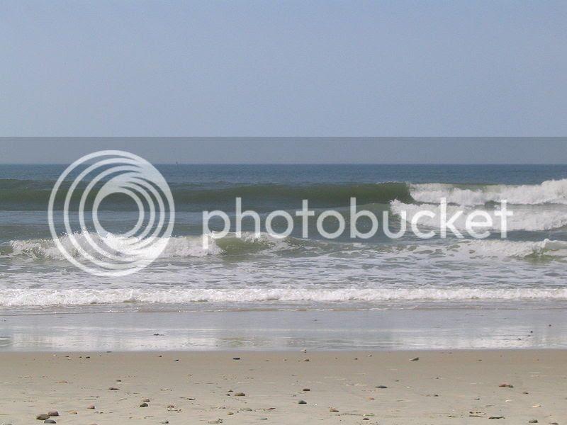 Top beaches in Horseneck Beach