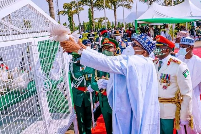 A MUST READ!! What Does It Mean When Doves/Pigeons Refuses To Fly On Armed Forces Remembrance Day In Nigeria?