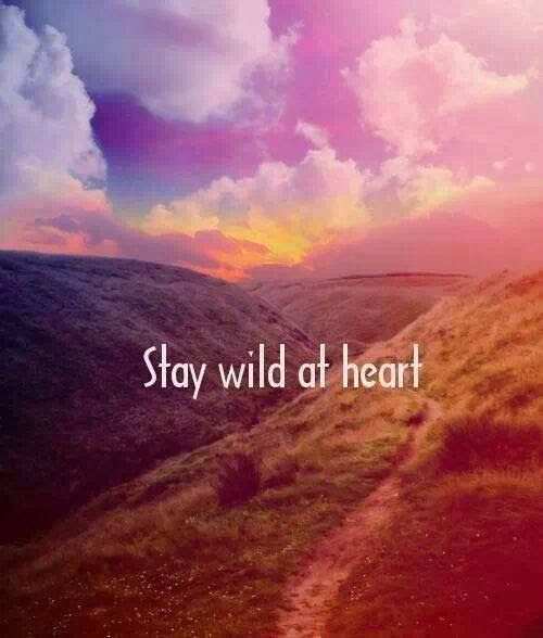 Wild Heart Quotes Golfclub