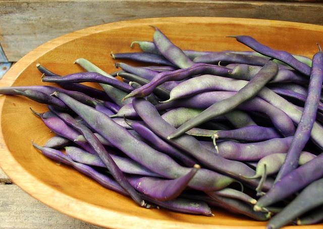 Purple beans 4