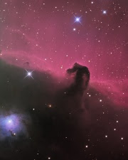 Horsehead Nebula by Martin Pugh, Overall Winner of Astronomy Photographer of the Year 2009