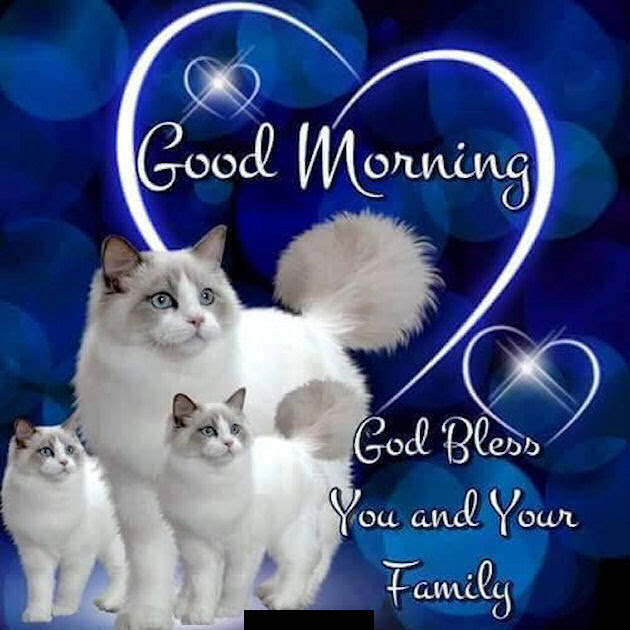 Good Morning God Bless You And Your Family Quote Pictures Photos