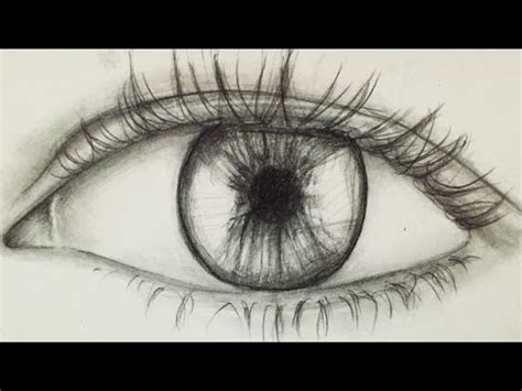 draw  eye  beginners alpha art youtube