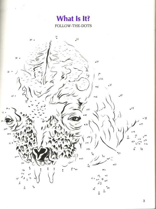 LOTR coloring book