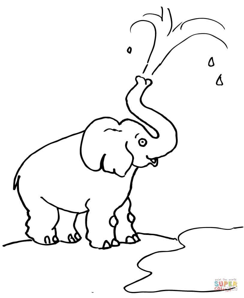Klick das Bild Elefant bläst Wasser aus dem Rüssel