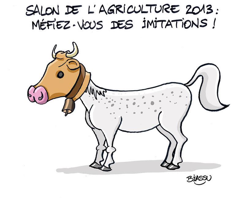 Scandale européen : La viande de cheval vendue pour du Boeuf
