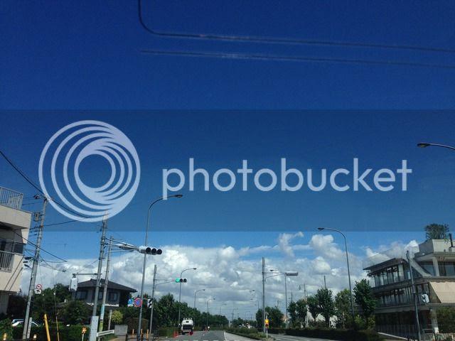 photo IMG_9072_zpshvayuoz6.jpg
