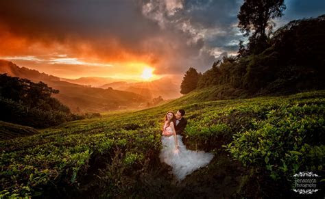 Cameron Highland Sunrise Pre wedding » BENSON YIN   BY
