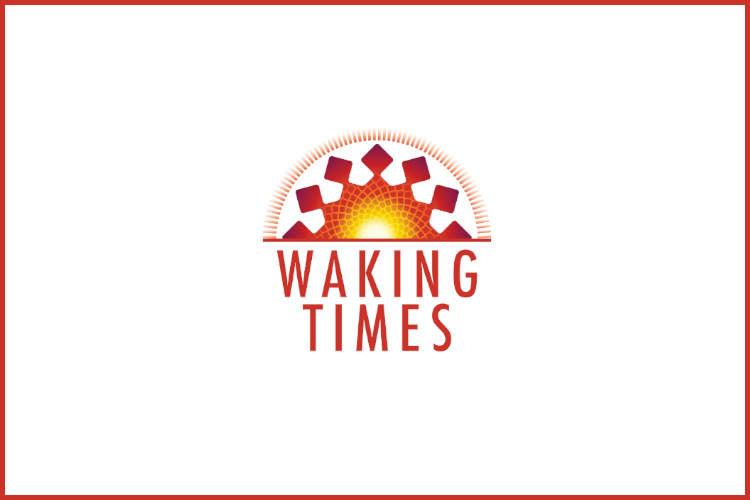 http://www.wakingtimes.com/wp-content/uploads/2014/12/Magic-Mushroom-300x200.jpg