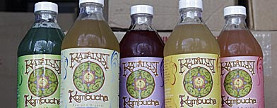 In this photo made July 1, 2010, the product line of Katalyst Kombucha fermented tea are displayed in a refrigerated storage unit at the Katalyst Kombucha company in Greenfield, Mass. (AP Photo/Charles Krupa)