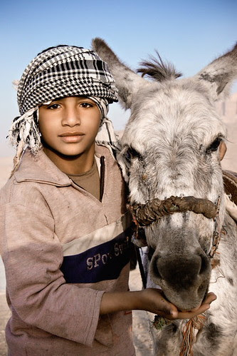 Boy and his Donkey