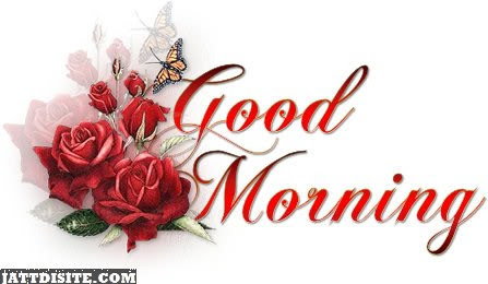 Beautiful Good Morning With Red Roses Jattdisitecom