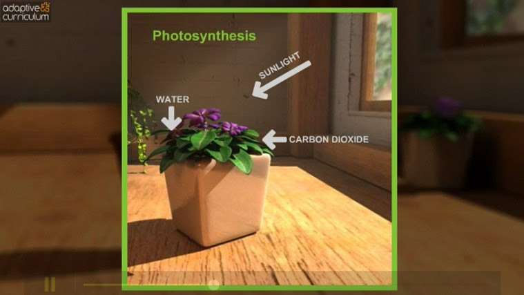 AC Life Science: Plants' Needs for Photosynthesis snímek obrazovky 4