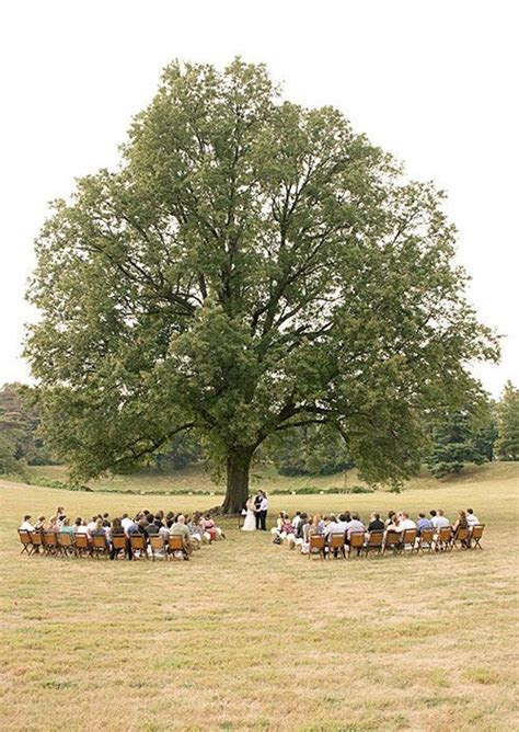25  best Farm Wedding ideas on Pinterest   Outdoor diy