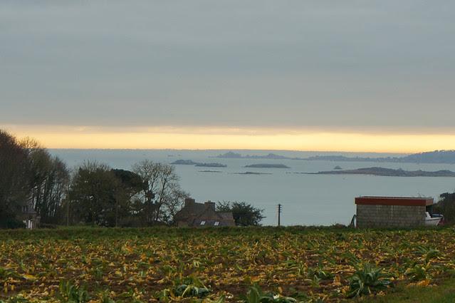 Brittany-1.jpg