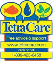 Tetra Care