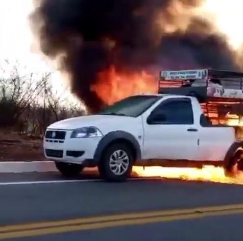 Carro pega fogo e animais morrem carbonizados na BR-427