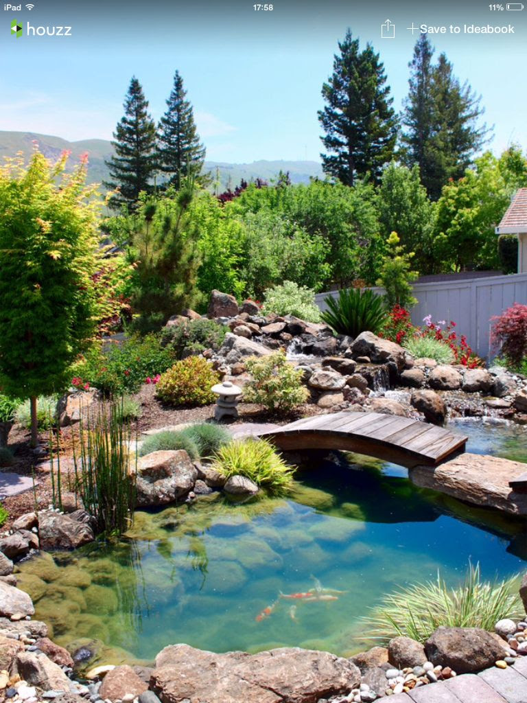 Koi Pond Landscape Ideas