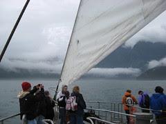 Navigating near Tasman Sea
