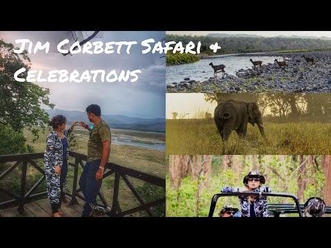 Jim Corbett National Park | Safari | Indian Summer | Hubby