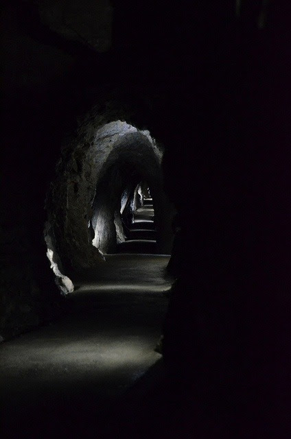kamigarcia:  Where do the tunnels lead?  Love this. reminds me of INTO THE STILL BLUE a bit, too.