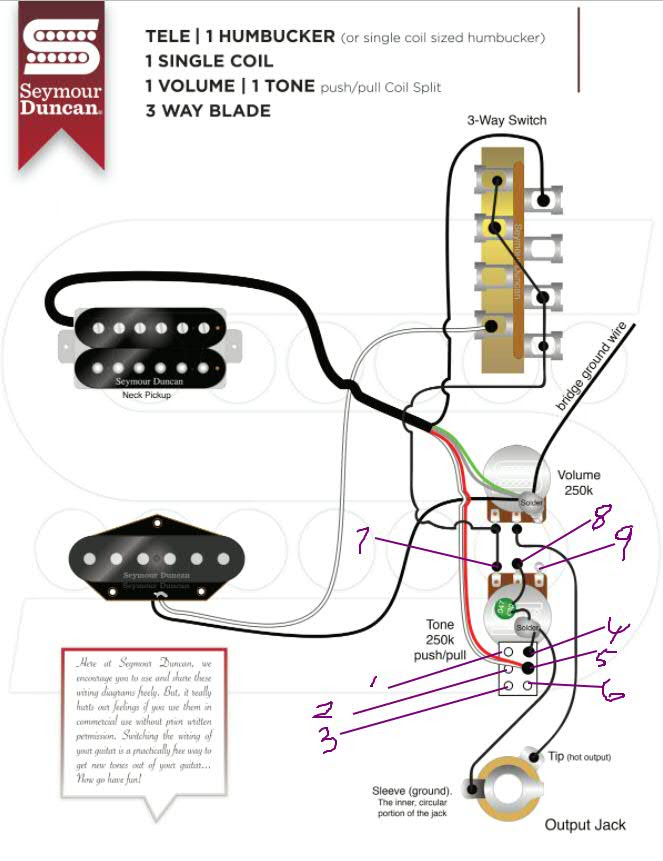 Diagram Telecaster Single Coil Humbucker 3 Way Switch Wiring Diagram Full Version Hd Quality Wiring Diagram Petaschematic43 Mykidz It