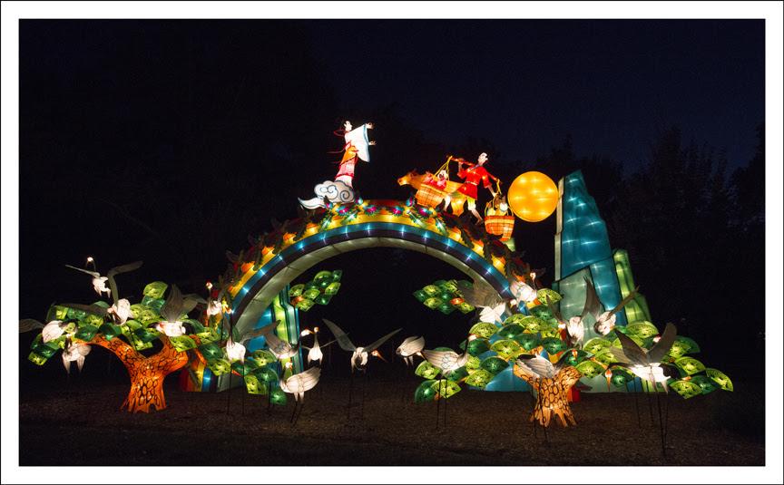 Festival of Lanterns 21