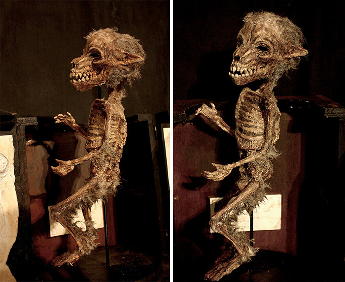 skulls-skeletons-thomas-theodore-merlin-home-london-46