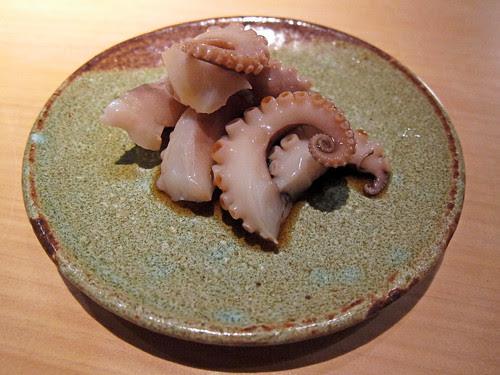 golden ring octopus