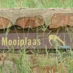 Marjo Mopani eerste week 2011 187