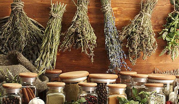 Ελληνικά βότανα: Το μυρωδικό που προστατεύει από καρκίνο και διαβήτη