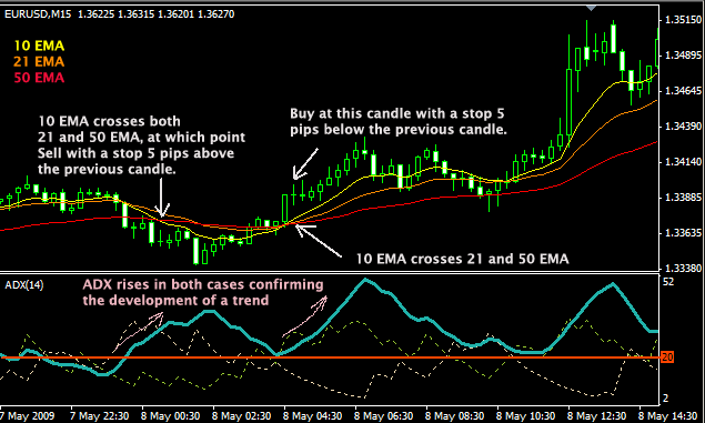 The Forex Mentorship Packages - The Forex Scalpers