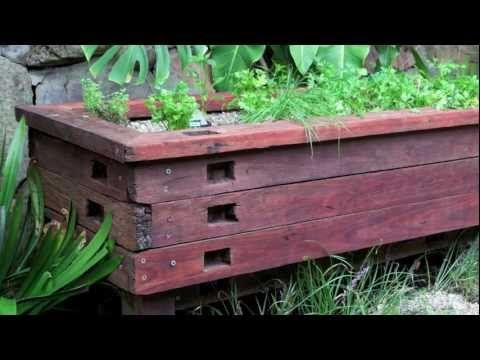Water plants and fish how to create an aquaponic for Pond gravel filter design