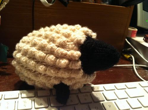Irene the sheep