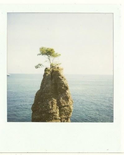 Φωτο:Giovanna Mariella Santinolli- flickr.com