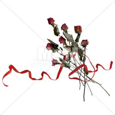 イラスト素材花 ドライフラワー バラと赤いリボン 2 Mm Collection