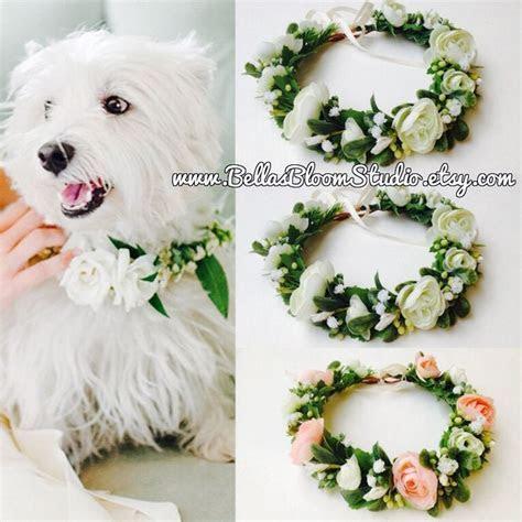 Best 25  Dog wedding attire ideas on Pinterest   Wedding