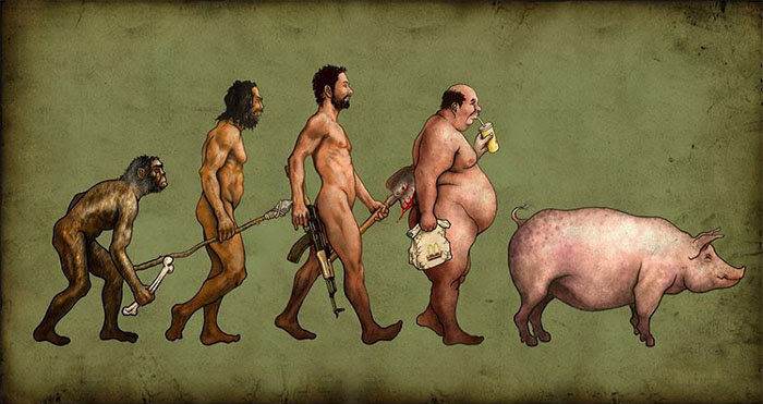 The Next Phase Of Evolution