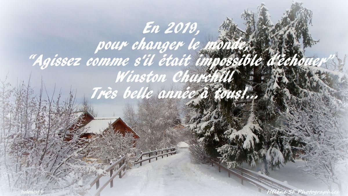 12 Cartes De Vœux De Bonne Année 2019 Gratuites Et Bonnes