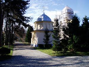 Vacances a Romania'06