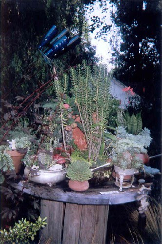 Garden embellishments