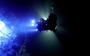 Researcher David Gruber  under water