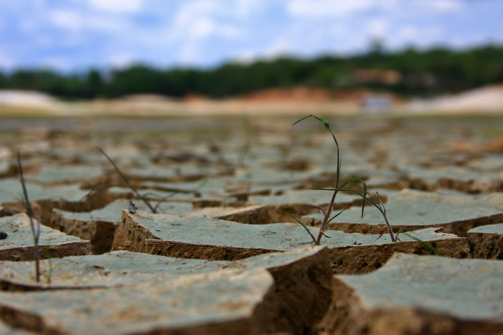 Strong drought in the Amazon rainforest