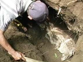 http://images.detik.com/content/2012/01/19/475/mayat-utuh-D.jpg