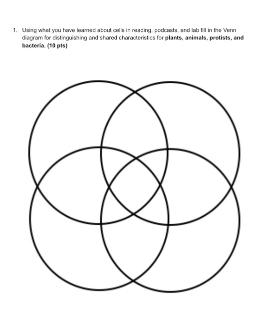 33 Venn Diagram Of Animal And Plant Cells